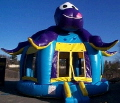 Rental store for BOUNCE HOUSE, OCTOPUS in Poughkeepsie NY